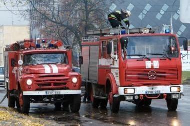 Lietuvoje daugėja gaisrų
