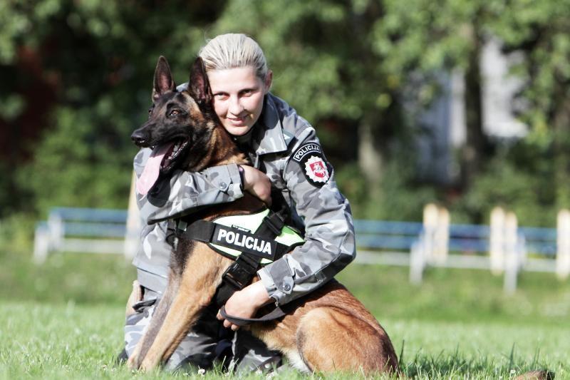 Tarnybiniai šunys Puma ir Zoro rado melduose pasiklydusį grybautoją