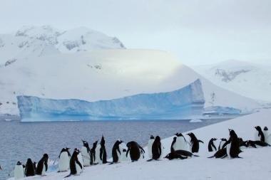 Arktyje – konfliktas dėl sienų