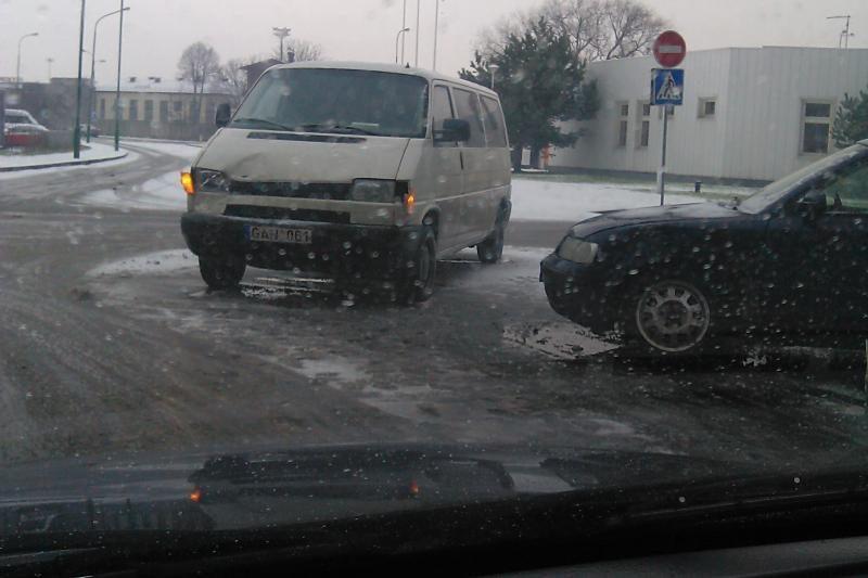 Užklupusi žiema didelių nelaimių nepridarė