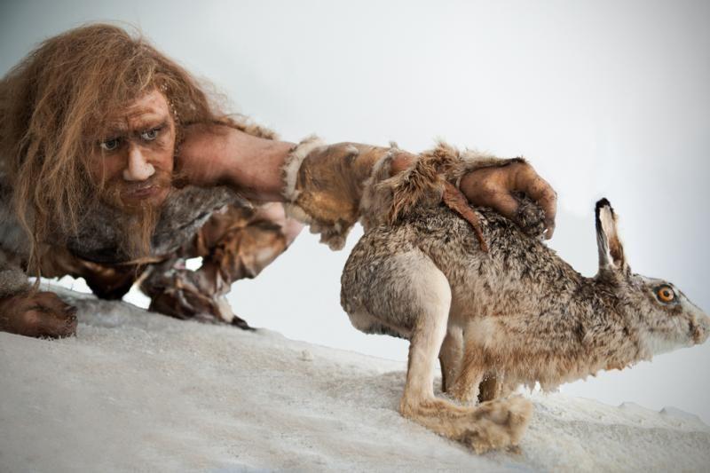 Tik Afrikos pietinės dalies gyventojai neturi neandertaliečių genų