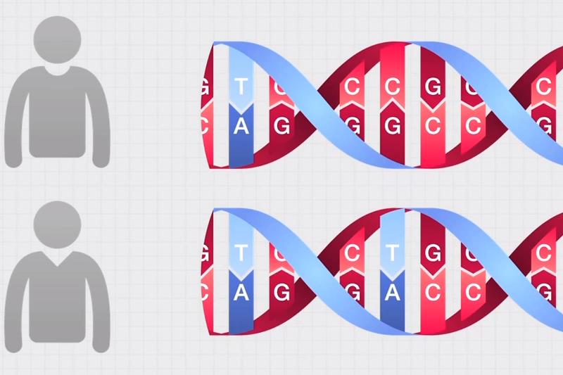 Sukurta mikroschema, kuri DNR grandinę iššifruoja vos per valandą