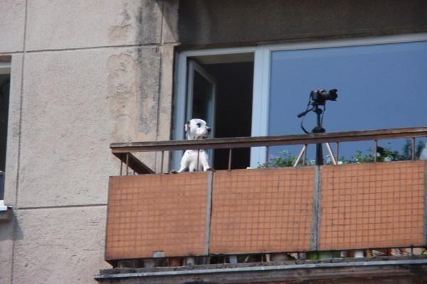 Ką daryti, jei kaimynas balkone šašlykus kepa?