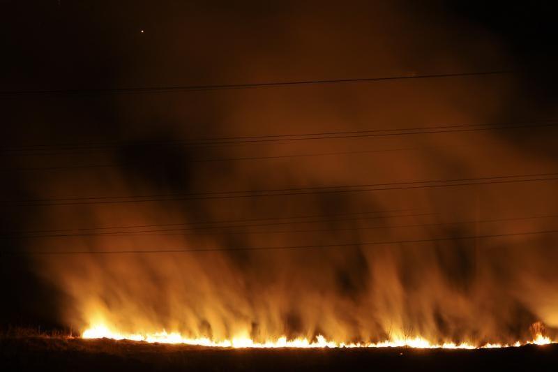Atšilus orams suaktyvėjo žolės degintojai