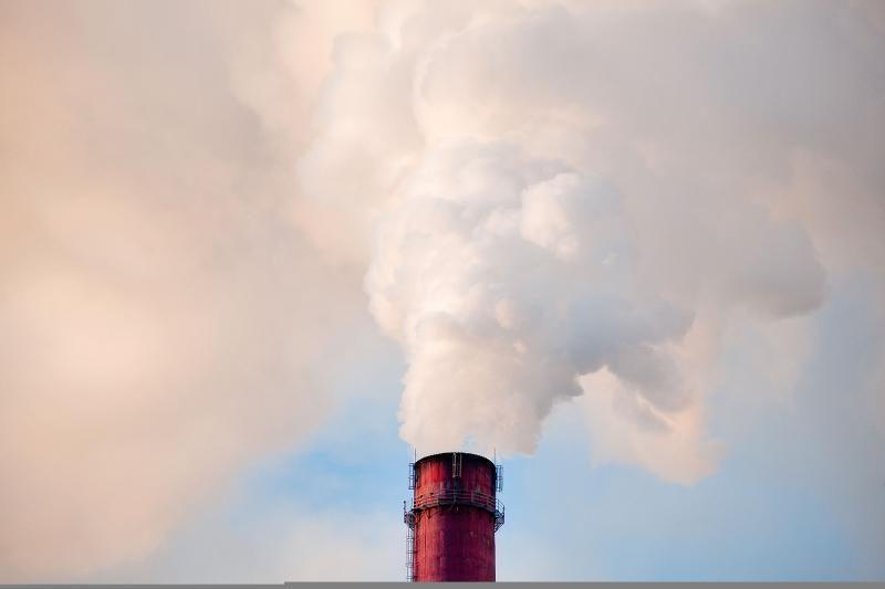 Ištyrus skundžiamą termofikacinę jėgainę, taršos nenustatyta