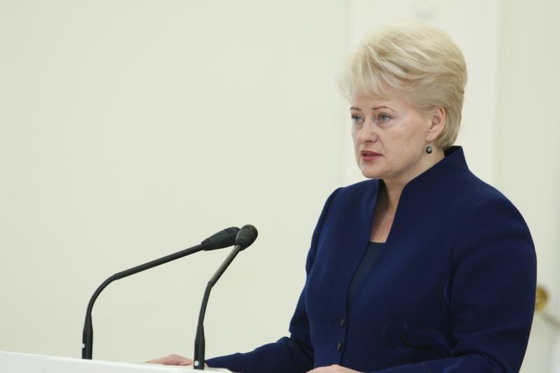 Prezidentė mato Suomijos patirties svarbą Lietuvai