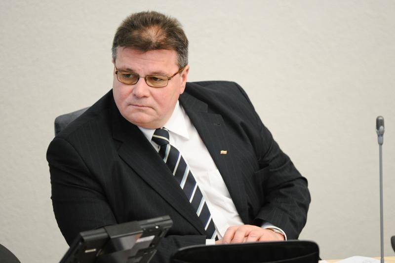 L. Linkevičiaus nuomone, pagalba rytų kaimynėms - būtina