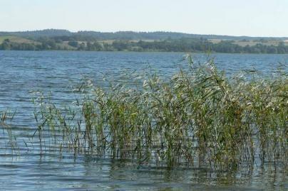 Tvenkinyje nuskendo nepilnametis