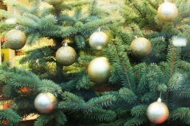 """Kalėdinės legendos ekskursijoje """"Kalėdinis miestas"""""""