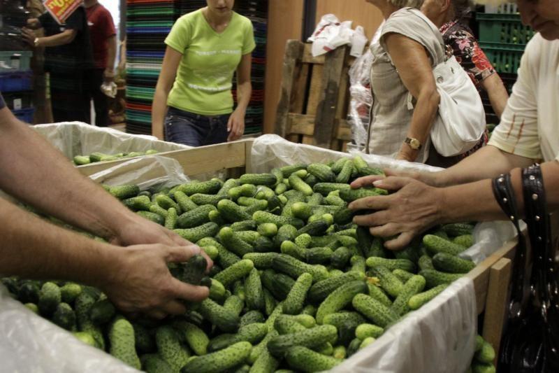 Lietuvos turguose sumažėjo agurkų pardavimai