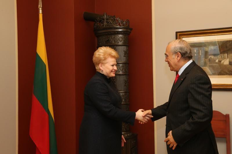 Tarptautinis pasitikėjimas Lietuva stiprėja