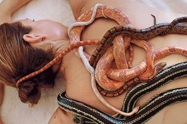 Masažas su gyvatėmis – kaip šaltas kompresas