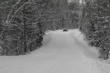 Urėdai džiaugiasi šalta žiema ir medienos paklausa