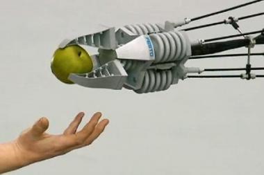 Bionika: robotų kūrėjai mokosi iš gamtos