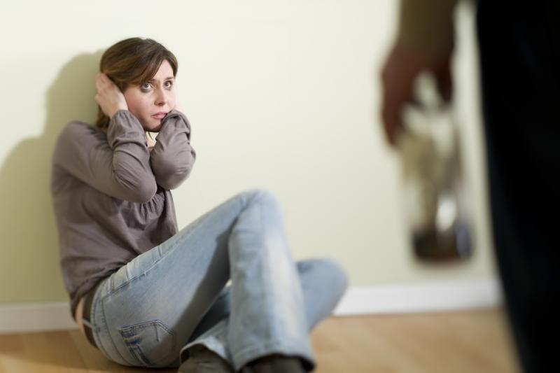 Policija ruošiasi įgyvendinti įstatymą prieš smurtą šeimoje