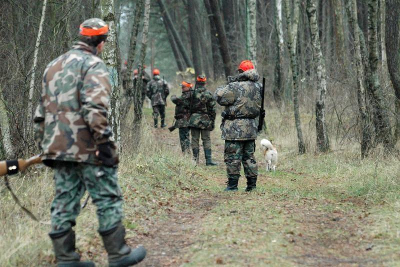 Į Seimą grįžta prezidentės vetuotas Medžioklės įstatymas