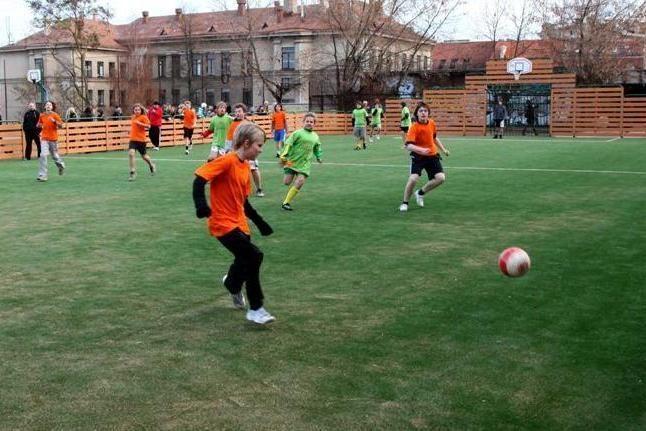 Mokyklos sporto aikštelė bus atvira ir aplinkinių namų gyventojams