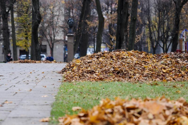 Gyventojų prašo sugrėbtų lapų nepalikti pakelėse