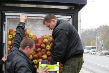 Reklaminius obuolius susirinko vagišiai