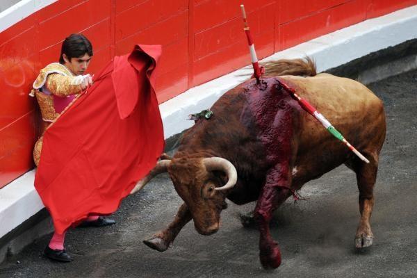 Ispanijoje iš koridos arenos ištrūkęs bulius sužeidė 30 žmonių