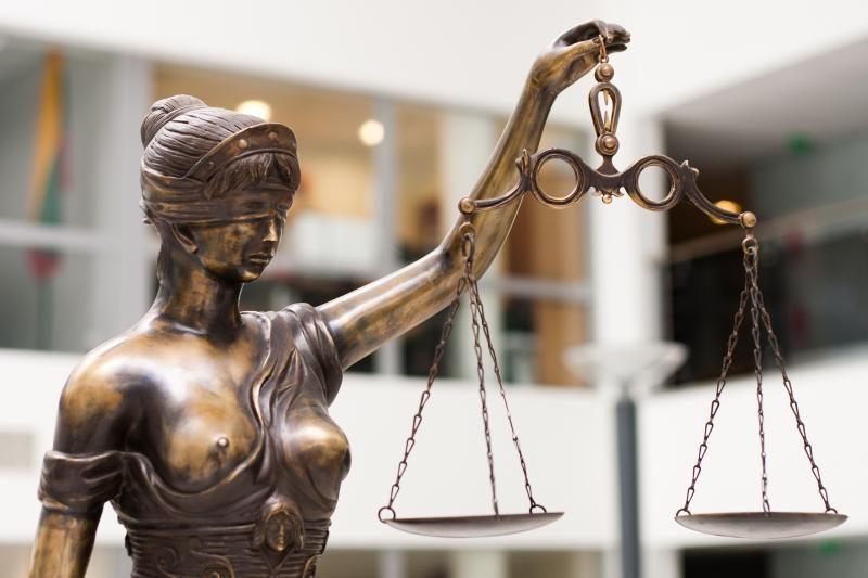 Kontrabanda įtariamo V. Karaliaus sūnus sulaukė teismo malonės