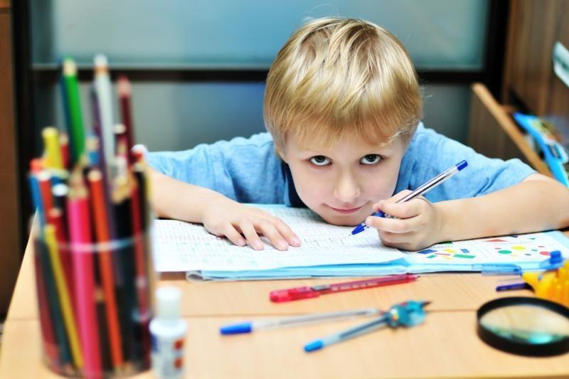 Lenkijos vokiečiai turės daugiau dvikalbių mokyklų