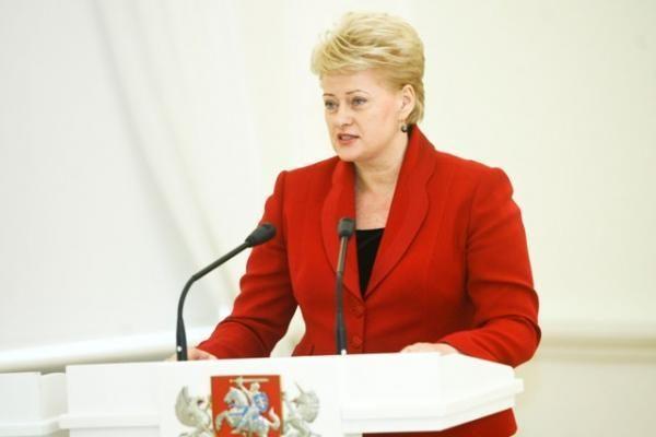 D.Grybauskaitė: Nacionalinės pastangos neįveiks globalių iššūkių internete