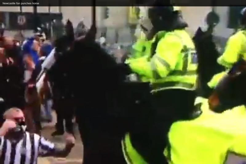 Kai susipykstama su proteliu: Anglijos futbolo fanų muštynės su arkliu