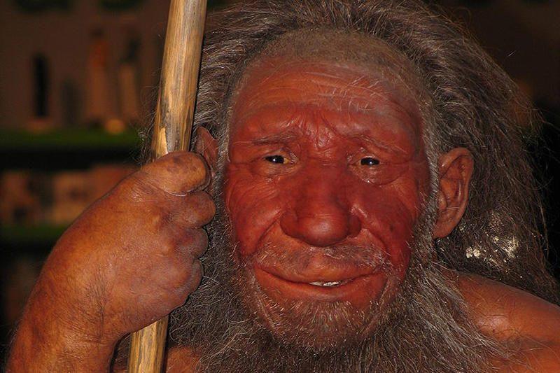 Ispanijoje rasti pirmieji neandertaliečių olų piešiniai