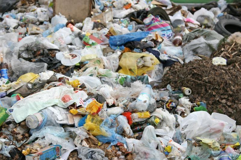 Gyvenimas be plastiko: eksperimentas pavirto gyvenimo būdu
