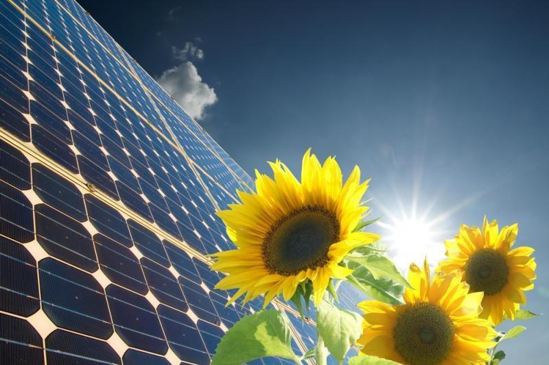 Energetikos ministerija bando stabdyti saulės elektrinių plėtrą
