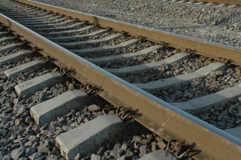 Vagys įniko į siaurojo geležinkelio bėgius