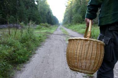 Grybautojai surado moters lavoną (papildyta)