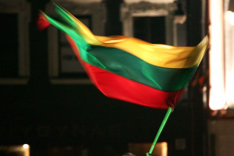 Vilniuje pavogta Lietuvos Respublikos valstybės vėliava
