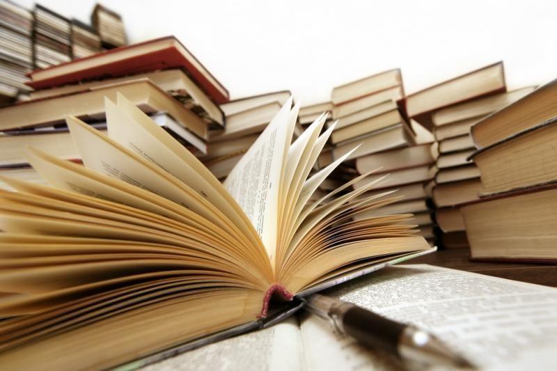 """L. Janušytės romanas """"Korektūros klaida""""  sulaukė antrojo  leidimo"""
