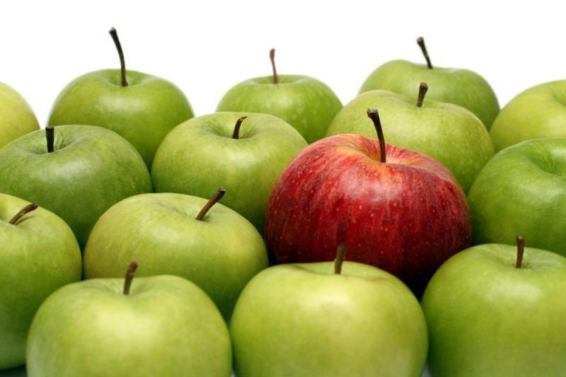Prognozuojama obuolių supirkimo kaina šiemet - apie 30 cnt už kg