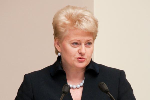 Prezidentė: atominio strateginio investuotojo parinkimas - Vyriausybės darbas