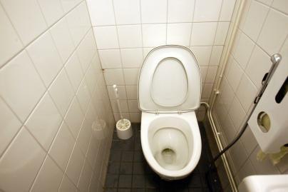 Vilniaus savivaldybė už 100 tūkst. litų parduoda tualetą