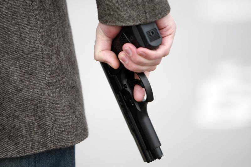 Dujinių pistoletų ir senų ginklų savininkai privalo juos registruoti