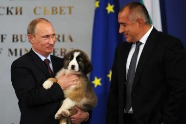Rusai premjerui V.Putinui siūlo Bulgarijoje dovanotą šuniuką pavadinti Plevaka ar Pipiru