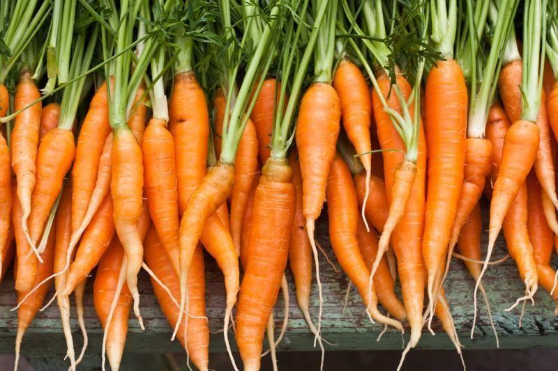 Rudens pabaigoje už morkas ir bulves teks mokėti brangiau