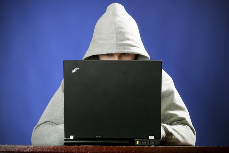Baigtas tyrimas dėl atakų, nukreiptų prieš internetinius tinklalapius