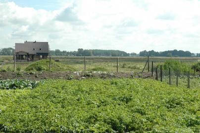 Klaipėdos apskrityje žemė grąžinama sparčiau