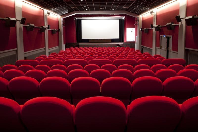 """Scenaristų gildijos apdovanojimai – filmams """"Taikinys Nr. 1"""" ir """"Argo"""""""