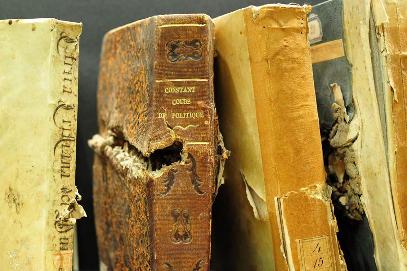Italijoje dėl vagysčių teko uždaryti biblioteką