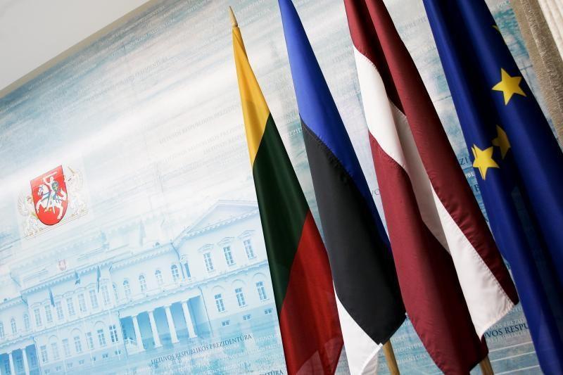 Politologė: Rusija blaškosi tarp kelių pozicijų dėl Baltijos šalių