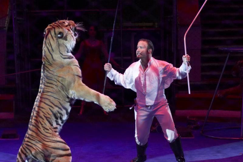 Per cirko pasirodymą tigras apšlapino žiūrovus