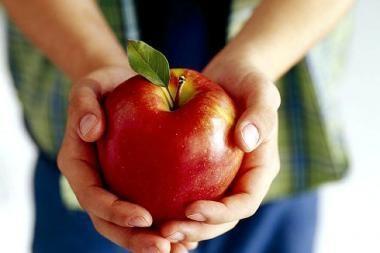 """""""Anykščių vynas"""" supirks 10 tūkst. tonų obuolių"""