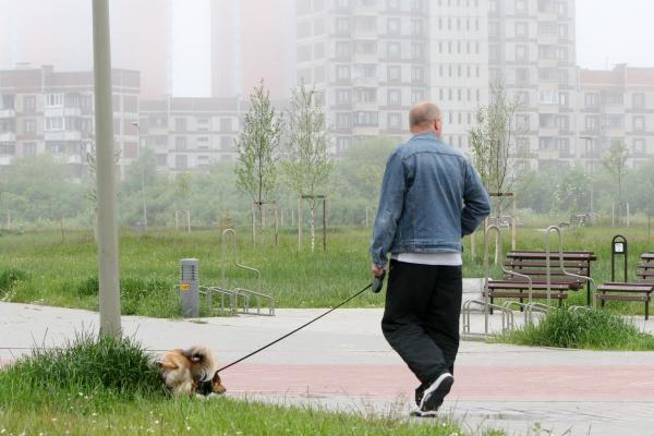 Naujosios Gyvūnų laikymo taisyklės gali švelnėti (papildyta)
