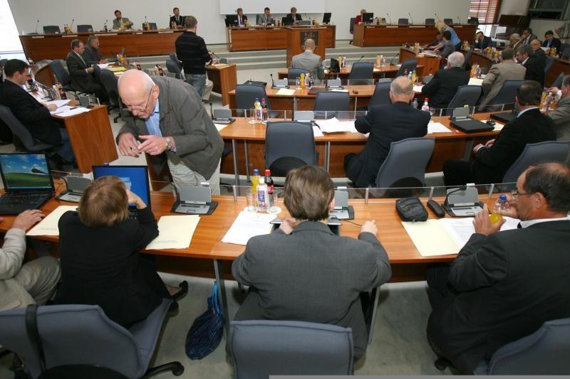 Vilniaus savivaldybė administracijos vadovo pavaduotoja - D. Narbut